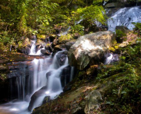 پارک ایالتی آبشار آمیکالولا