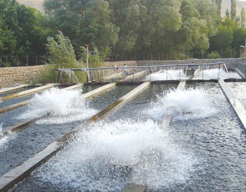 طرح پرورش ماهی در گرجستان