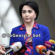تعلیق قوانین مهاجرت گرجستان