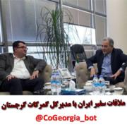 ملاقات سفیر ایران با مدیرکل گمرکات گرجستان