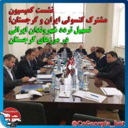 تسهیل تردد ایرانیان به گرجستان