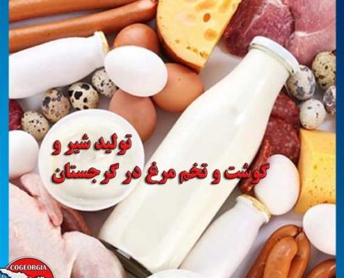 تولید شیر و گوشت در گرجستان